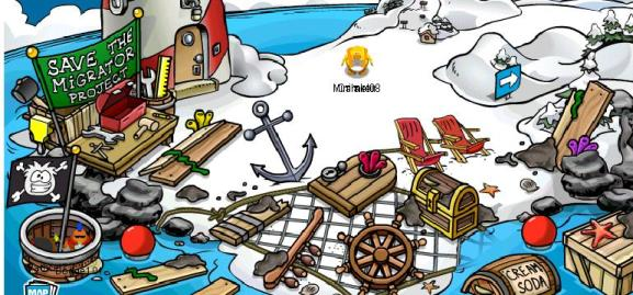 rockhopper-stuff-on-beach-lots-of-it.jpg
